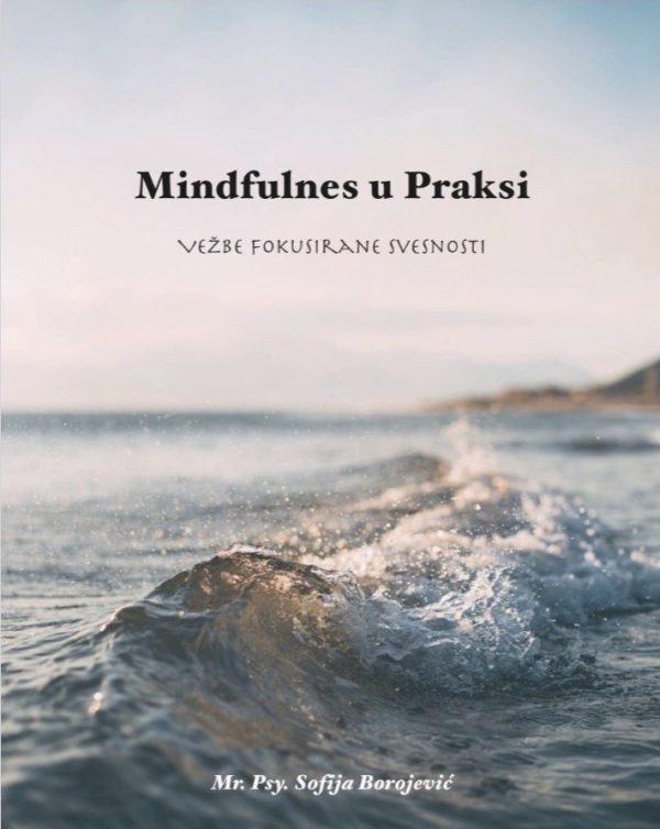 Mindfulness u Praksi